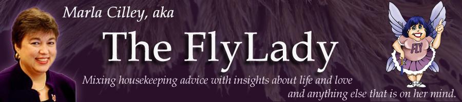 flylady2